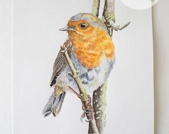 European Robin, Original Watercolor, Home Decor, Bird Art, Wall Art, Nature Painting, Watercolor Painting, Bird Painting (8x10in.)