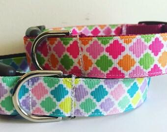 1 inch wide Spring Quatrefoil Trellis Design Dog Collar in Pink or Purple