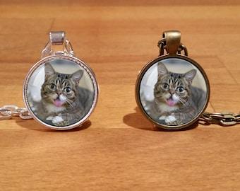 Lil Bub necklace, Lil Bub pendant, Cat necklace, Silver Plated necklace, Antique Bronze Necklace (16)