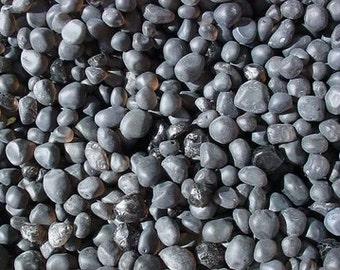 one pound apache tears rough gemstone gem stone