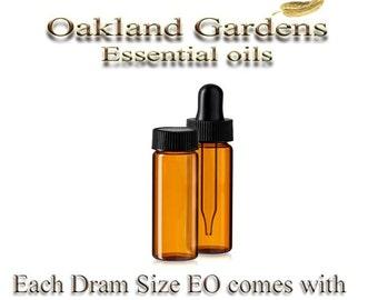 4 mL - 1 Dram x CORIANDER CILANTRO Essential Oil  - 100% PURE Therapeutic Grade Essential Oil - Coriandrum sativum
