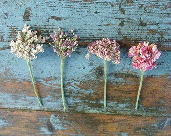 Pinks Dried Flower Wired Stems  Buttonholes, Hair Set of 6