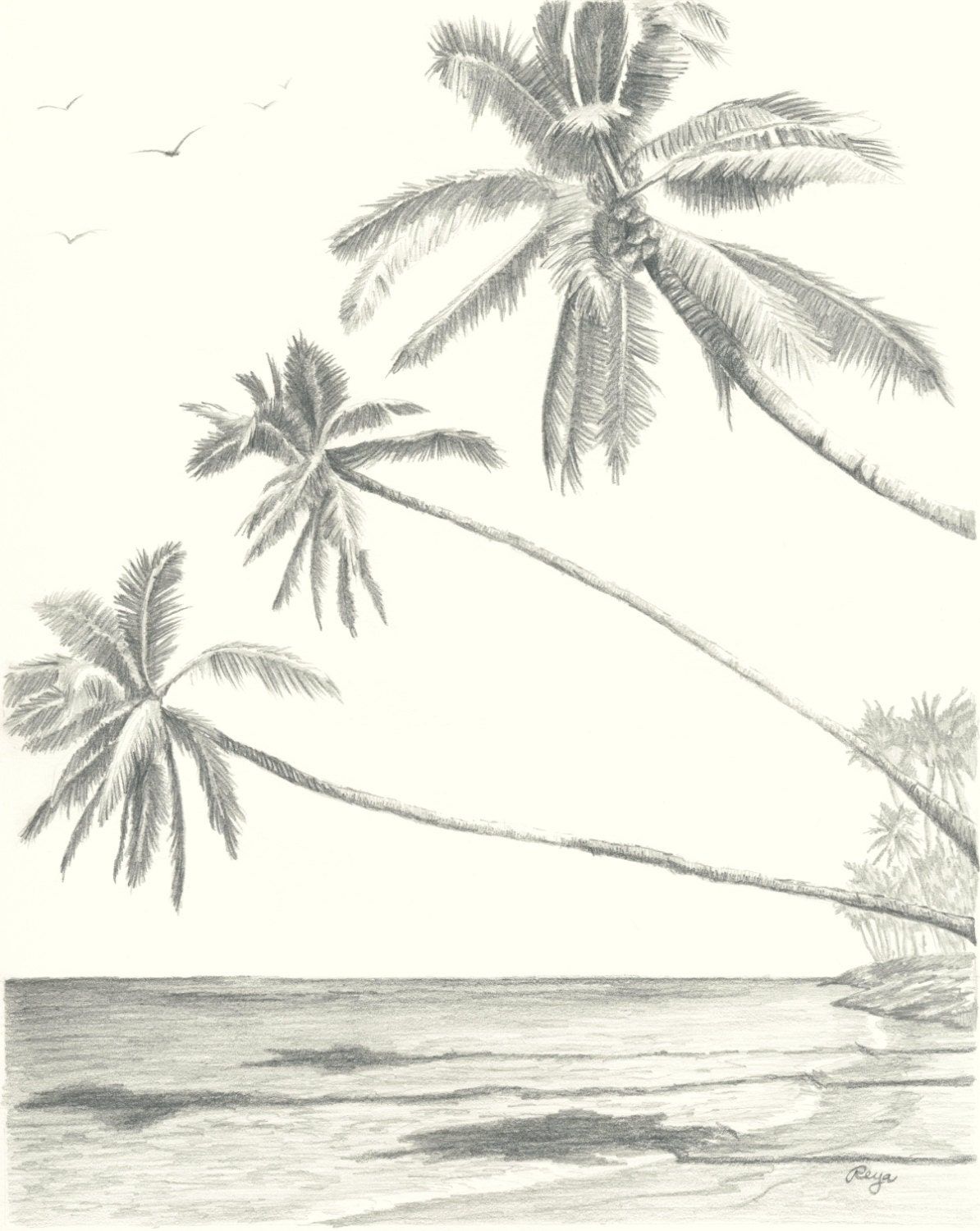 Sketch | Yvonne Pecor Mucci