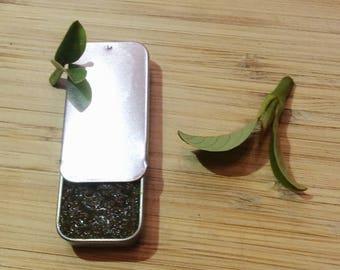 Green tea matcha coconut sugar lip scrub