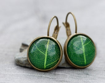 Real leaf - earrings with a real leaf