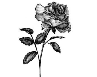 Belle – Print
