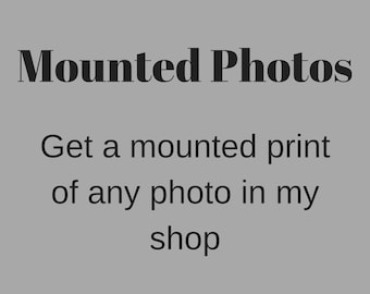 Mounted photos, get a mounted print of any photo in my shop