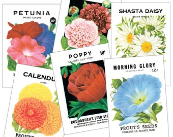 Vintage Seed Packet Postcards - 12 pack