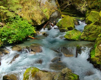 North Cascades Stream