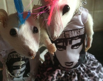 Im in love punks. Free shipping taxidermy rats