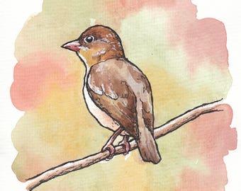 6x8 Original Fall Bird Watercolor