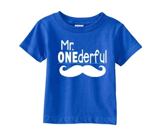 Mr ONEderful! Mustache 1st Birthday shirt birthday by raglan shirt Front and Back design Name on back first birthday one year  Mr Wonderful