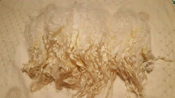 Beautiful Masham Locks from the UK! Natural Lustrous Curly Undyed Washed Separated Unbelievably Soft