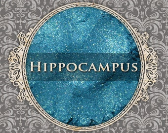 HIPPOCAMPUS Shimmer Eyeshadow: Samples or Jars, Bright Turquoise, Green Duochrome, Loose Eyeshadow, VEGAN Cosmetics, Ships Out in 5-8 Days