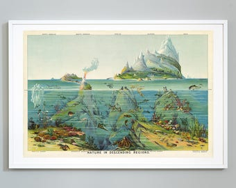 Nature in Descending Regions Pictorial Science Map, Levi Walter Yaggy,  c. 1893,  Giclee Print, Museum Quality, Educational Chart