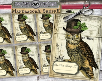 vintage bookplates   8x vintage library cards with owl   ex libris instant download   printable digital collage sheet  for book lovers