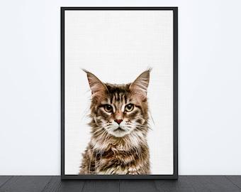 50%OFF,  Cat Print Nursery Animal Print Baby Wall Art White and Brown Animal Print Cat Poster Wall Decor Cat Wall Art