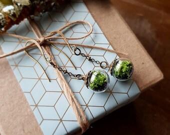 Terrarium Bead Dangle Earrings