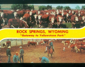 "Rock Springs Wyoming ""Gateway to Yellowstone Park"" Photo Postcard Cattle Branding (12661)"