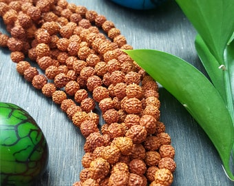 100 rudraksha seed beads round natural 6-7mm