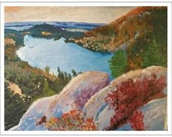 Acadia Forest Postcard