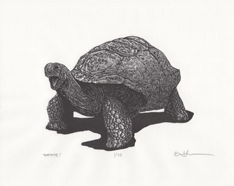 Tortoise- Limited Edition Letterpress Print from an Engraving