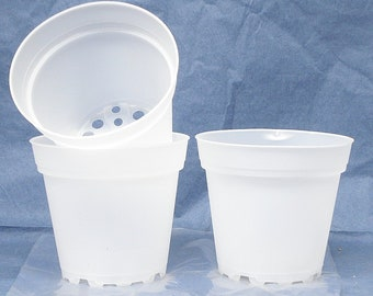 Clear Plastic Teku Pot for Orchids 4 inch Diameter - Quantity 3