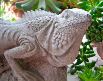 Iguana Statue, Concrete Lizard Figure, Cement Reptile, Garden Decor, Concrete Statues, Garden Statues, Concrete Iguanas, Lizards, Yard Art