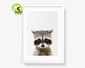 Raccoon Print, Woodlands Nursery, Nursery Forest Print, Animal Print, Nursery Woodland Art, Printable Woodlands Decor, Animal Photo Wall Art