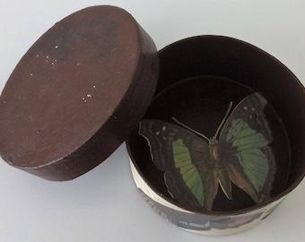 Storage Box - Vintage Butterflies Paper Collage (Dark Brown)