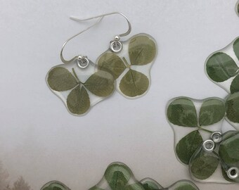 Shamrock, St. Patrick's Day Gift, Gardener Gift, Gift for her, real pressed leaf earrings or pendant LIMITED SUPPLY