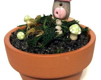 Mini Fairy Faery Gnome Garden House and Mushrooms - Polymer Clay Miniature Art Terrarium - Handmade Woodland Home Decor