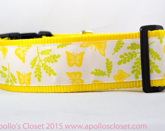 "Yellow Spring Butterfly Dog Collar  - 2"" inch wide for big dogs - ,buckle or martingale - spring dog collar - collar with butterflies nature"