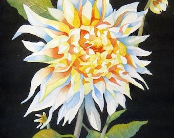 SNOW WHITE DAHLIA - Original  Watercolor Painting