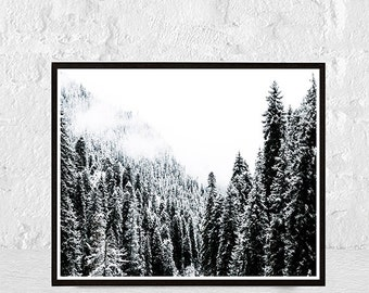 forest print,  forest wall art, nature art, forest photography, nature prints, nature photography, nature print, forest poster, tree print,