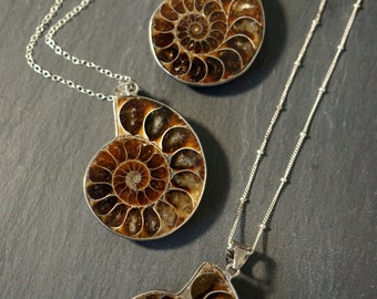 Ammonite Fossil / Ammonite Necklace / Silver Ammonite Necklace / Ammonite Pendant / Gift for Mom / Prehistoric Relic / Mothers Day Gift
