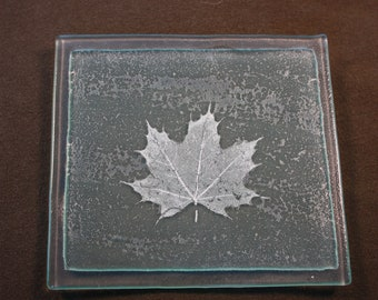 Black Maple Glass Fossil Tile