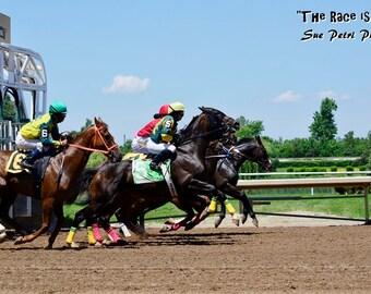 Action Photography, Horse Racing Photos, Fine Art Photography, Horse Racing, Photographs of horses, Horse Racing Greeting Card, Magnet