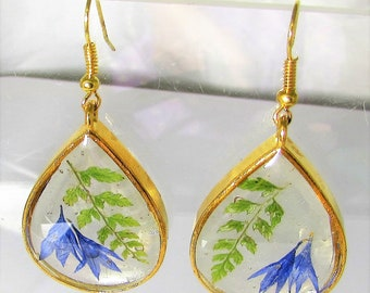 Fern and Bachelor's Button Petal,   Real Flower Earrings,   Pressed Flower Jewelry, Resin (3115)