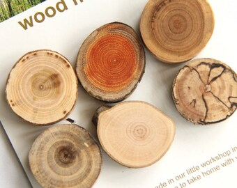 6 wood magnets - for home or office - elm, buckthorn, cherry, butternut, beech, spalted maple - warm mix