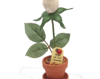 "14th Anniversary gift - ""ivory"" desk rose"