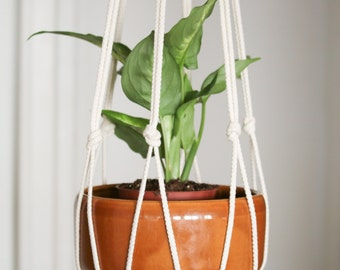 Macrame plant hanger with cotton rope on wood ring