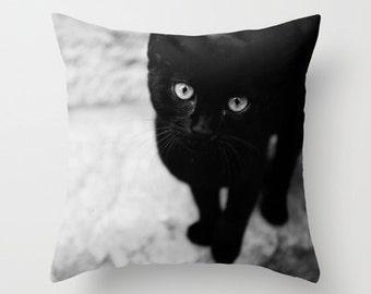 photography throw pillow, black and white photography, nursery decor, pillow cover, kitten photography, animal pillow, Croatian Kitten