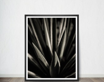 Black and White Plant Poster , Art Print, Digital Art, Digital Art Print, Digital Artworks, Digital Print Art, Digital Art Download