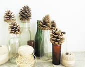Glass Bottle Collection - 9 - Vintage Antique Eclectic - Vase Grouping