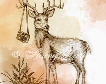 "Deer - ""Woodland Creature"" series Art Print"