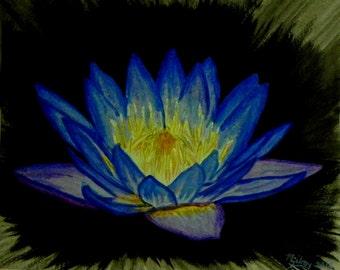 Nature Art...MGilroy...Lotus Art...Floating Lotus Art...Zen Art...Lotus Art Print...Radiant Lotus Art...Radiant Lotus...Nature Art Print...