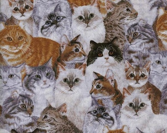 Cats Kittens Fabric, Quilt or Craft Fabric, Fabric