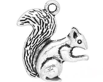 1 21x21mm squirrel charm pendant