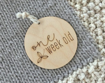 ENGLISH - 4-piece Set - Baby Timber Milestone Discs - Nursery Decor - Wood - Newborn Gift - Photo Props - Cards